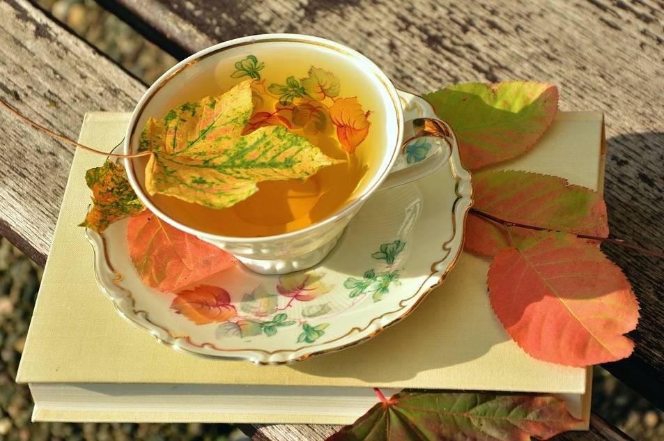 porcelanowa filiżanka jesienią